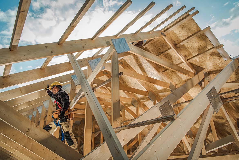 Diagnosi delle strutture in legno